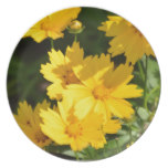 Yellow Coreopsis Melamine Plate