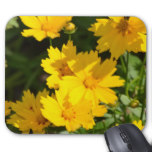 Yellow Coreopsis Mouse Pad