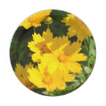Yellow Coreopsis Paper Plate