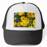 Yellow Coreopsis Trucker Hat