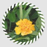 Yellow Marigold Sticker